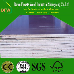 Construction Use Film Faced Plywood pictures & photos
