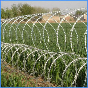 Best Price Concertina Razor Barbed Wire Concertina Wire Mesh pictures & photos
