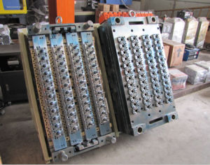 Pet Preform Injection Molds pictures & photos