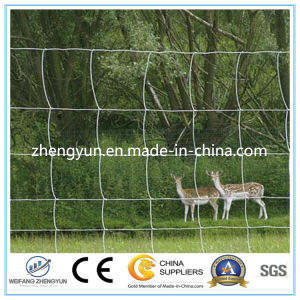 Good Supplier Grassland Field Fence/Animal Fence with Lower Price pictures & photos