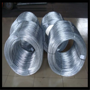 Bwg20 Elctro Galvanized Steel Wire pictures & photos