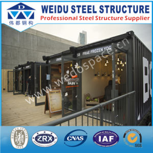 Low Cost Steel Frame Container House (WD102724)