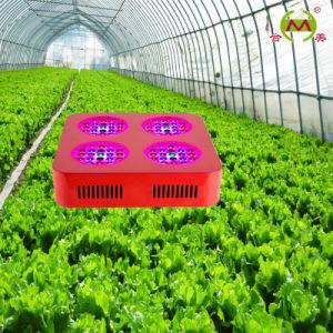 6 Band 200W Grow LED Light (HM-G-4x50W01)