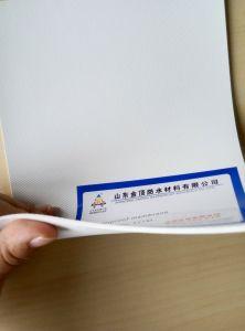 PVC Polyvinyl Chloride Waterproofing Architecture PVC Membrane pictures & photos