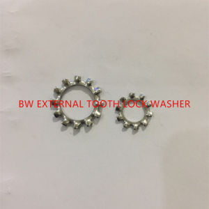 DIN6797A External Tooth Lock Washer pictures & photos