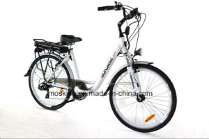 Italian Manufacturer Pas En15194 Electric Bicycle (TDF11Z)