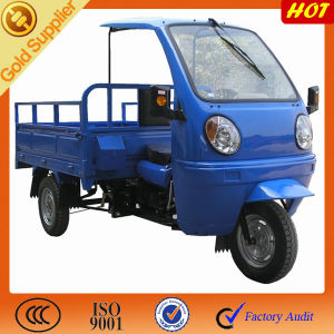 Good Price 3 Wheel Car with Driver Cabin pictures & photos
