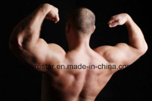 Testosterone Cypionate for Men Muscle Building pictures & photos