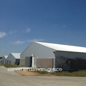 Hot Gavalnized Prefab Chicken House for modern Farm pictures & photos
