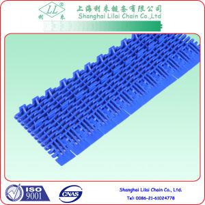 Transpotation Modular Belts for Conveyor Chains (S900 transpotation modular belts) pictures & photos