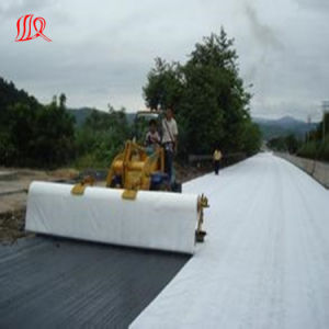 PP Geotextile pictures & photos