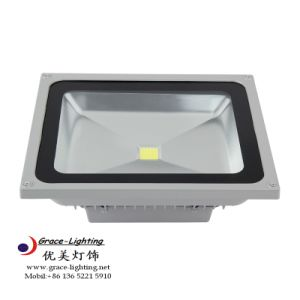 Professional Manufacturer 20W LED Flood Light pictures & photos