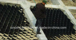 Shaped Structures Geocell Sheet Production Line PE HDPE Sheet Extrusion Line pictures & photos