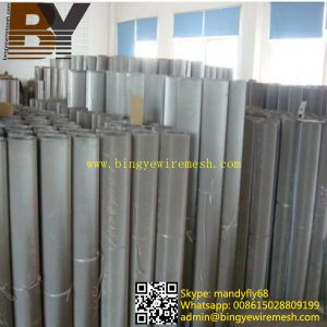 Manufacture Stainless Steel Metal Mesh pictures & photos