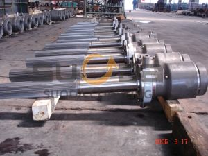 Spinder/Gear Coupling with Spline pictures & photos