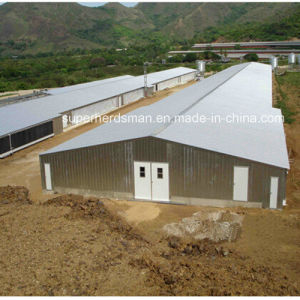 Prefab Steel Structure Chicken House Construction pictures & photos