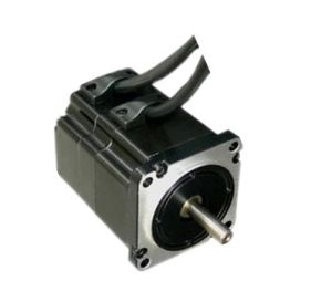 310VDC 313W 1n. M 3000rpm Electrical DC Motor pictures & photos