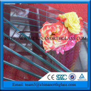 China Simple Shower Door Irregular Shape 8mm Tempered Glass pictures & photos