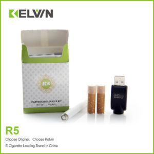 Kelvin Newest 500puffs R5 Disposable Shisha Pen