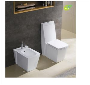 Hot Sell New Design Toilet Seat Ce-T2010 pictures & photos