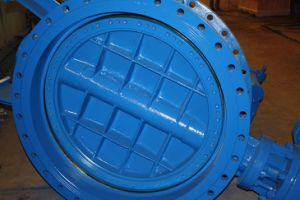 Ductile Iron DIN Flanged Butterfly Valve