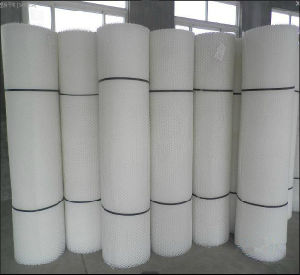 China Supplier White Plastic Flat Netting/Plastic Wire Mesh pictures & photos