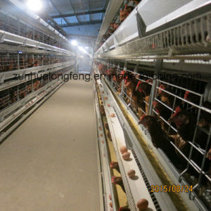 A Type of Automatic Poultry Cage pictures & photos