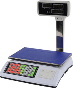 Electronic Scale (ACS-P02) pictures & photos