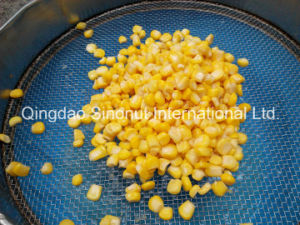 2015 Crop Canned Sweet Corn Brc, HACCP, FDA pictures & photos