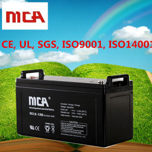 12 Volt Deep Cycle Marine Battery 12 Volt Marine Battery pictures & photos