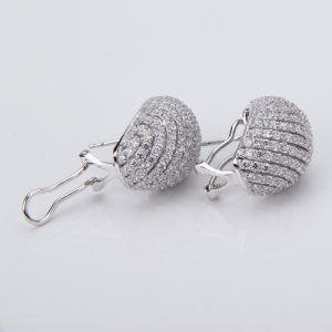 Fancy Sterling Silver Jewelry Earrings (WE0010)