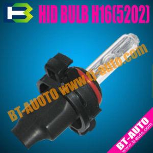 New HID Xenon Bulb (H16/5202)