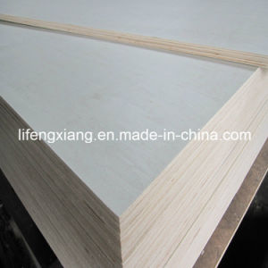 Poplar Plywood for Packing and Furniture