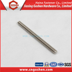 Stainless Steel / Carbon Steel Threaded Rod/ Lead Screwsdin975, DIN976 pictures & photos