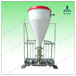 Wet-Dry Feeder for Pig Material Slot pictures & photos