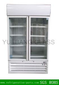 Tempered Glass Door for Beverage Refrigerator