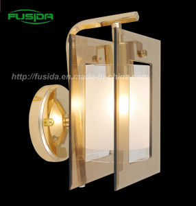 High Quality Classical Iron and Glass Wall Lamp/Wall Lighting (9110/1W) pictures & photos