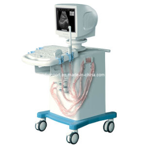 Digital Ultrasound Scanner with CE (CX9002) pictures & photos