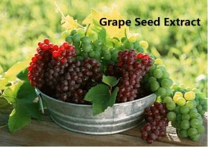 (Grape Seed Extract) -Beauty &Skin Care Grape Seed Extract pictures & photos