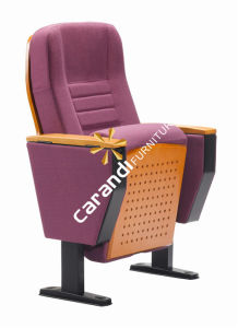 Commercial Meeting Room Furniture Auditorium Chair (Rd8602)
