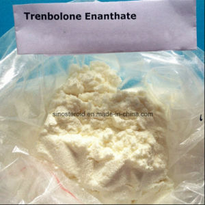 Trenbolone Enanthate Bodybuilder / Muscle Growth Steroids CAS 10161-33-8 Pharmaceutical Grade