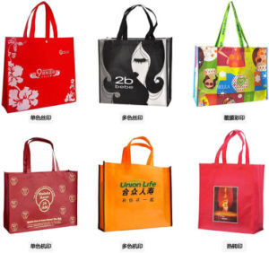 Premium PP Laminated Non-Woven Shopping Bags for Cosmetics (FLN-9047) pictures & photos