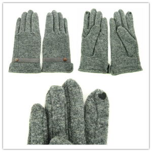 Lady Fashion Wool & Screen Touch Gloves (JYG-25063) pictures & photos