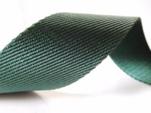 40mm Green Twill Nylon Webbng for Bags pictures & photos