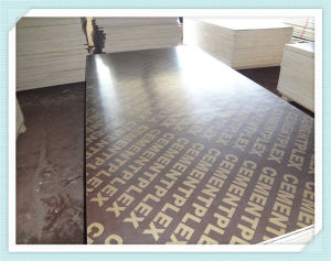 Furniture /Construction Use Plywood, Film Faced Plywood, Shuttering Plywood pictures & photos