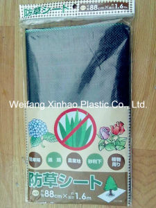 Weed Control Fabric/Ground Cover pictures & photos