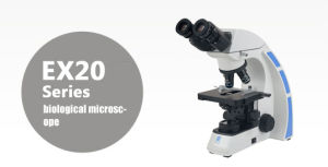 Ex20 Series Biological Microscope