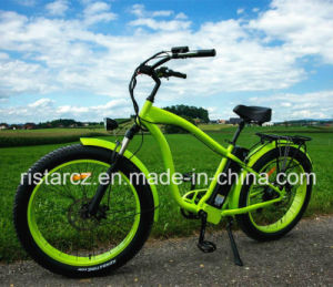 Hot Selling Beach Fat Tire Electric Bike in China (RSEB-505) pictures & photos