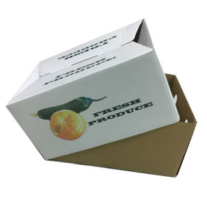 Custom Rigid Cardboard Packing Box for Fruit Shipping pictures & photos