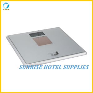 Large LCD Display Digital Solar Scale for Hotel pictures & photos